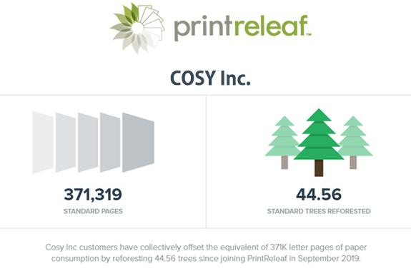 COSY植林状況